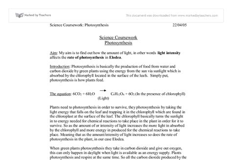 Argumentative Essay Title by Argumentative Essay On Title Ix Research Paper Essay Www Coreinteriors In