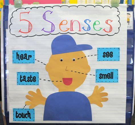 Kindergarten Activities Senses   mrs ricca s kindergarten science five senses
