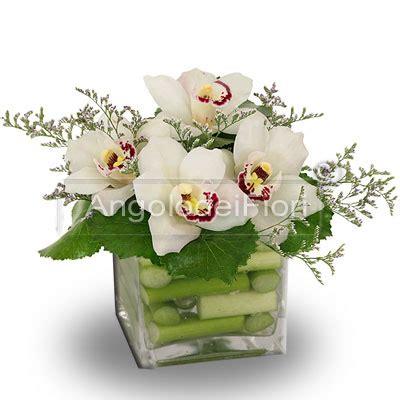 fiori fantastici acquistare piante di orchidee