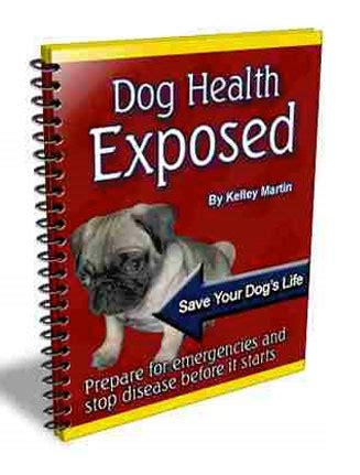 Plr Ebooks With Giveaway Rights - dog health plr ebook with private label rights