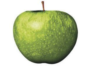 Who Owns Row Records Now Best 25 Apple Records Ideas On Preschool Apple Theme Preschool Apples