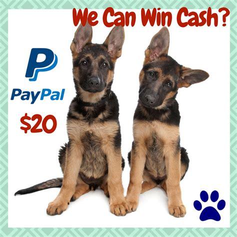 Win Money Easy - win 20 paypal cash open ww 11 21