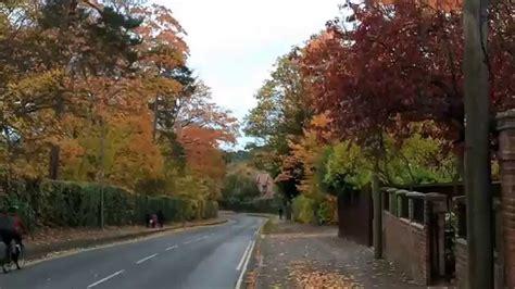 Autumn In Oxford autumn in oxford