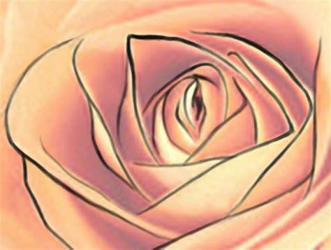 illustrator tutorial rose adobe illustrator page 9