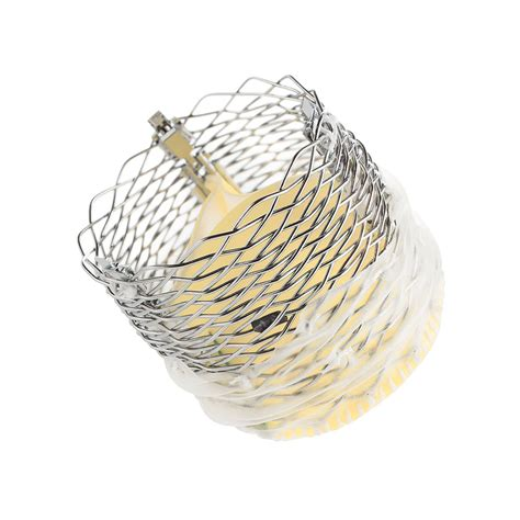 lotus aortic valve transcatheter aortic valve replacement tavr system