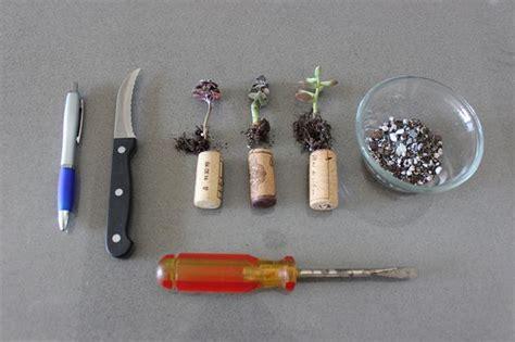 tappeto con tappi di sughero come trasformare i tappi di sughero in piante col riciclo