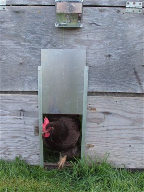 automatic chicken coop door opener by cheeper keeper