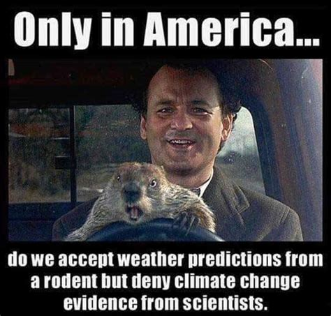 Funny Weather Memes - weather predictions from rodent funny pictures quotes