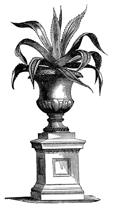 victorian archives page 3 of 5 the graffical muse victorian garden graphics potted plants in urns the