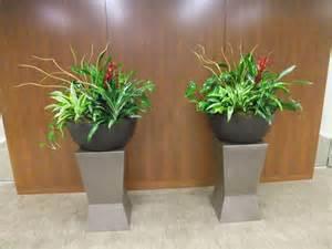 Interior Plants Interior Plant Service Kelly Mac Interiorscapes