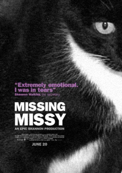 design poster lost cat hilarious missing cat poster cat movie posters pinterest