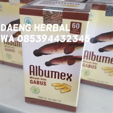 Albumex Kapsul Minyak Ikan Gabus albumex minyak ikan gabus daeng herbal