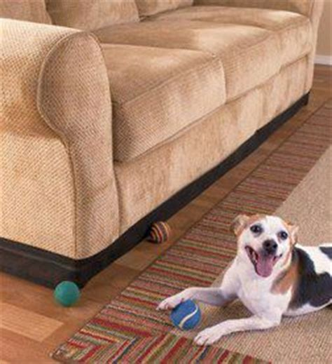stop dog from getting on couch keep rooms clean tidy organized reduce floor clutter