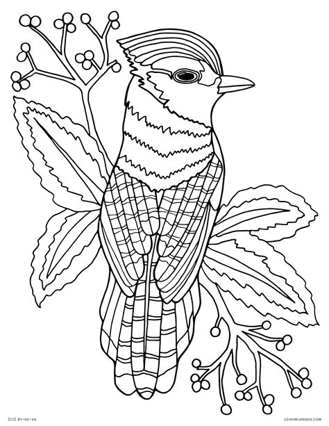free color pages coloring pages