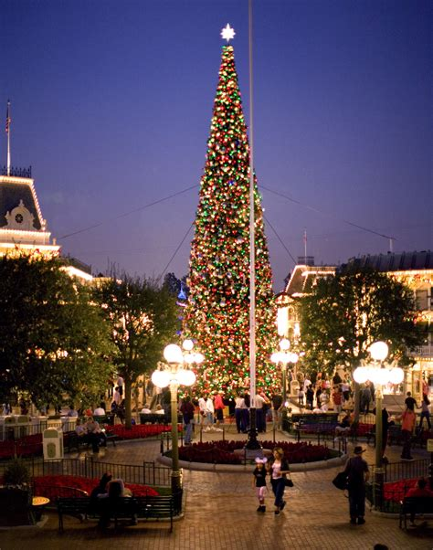 top 10 walt disney world christmas trees