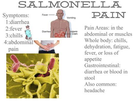 salmonella on flowvella presentation software for mac
