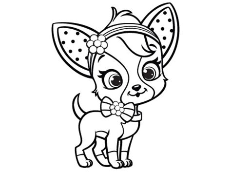 coloring pages chihuahua dogs activities archive strawberry shortcake chiffon
