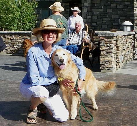 golden retriever colorado springs great golden retriever roundup pagosa springs dogs in our photo