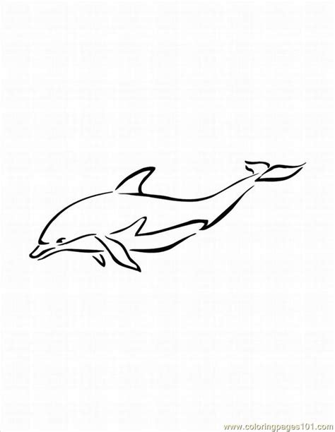 coloring pages baby dolphins 43 cute baby dolphin coloring pages gianfreda net