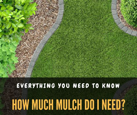 how much mulch do i need everything you need to know