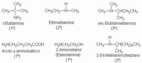 aminoacidos con cadenas alifaticas mundo alterno compuestos organicos y su nomenclatura