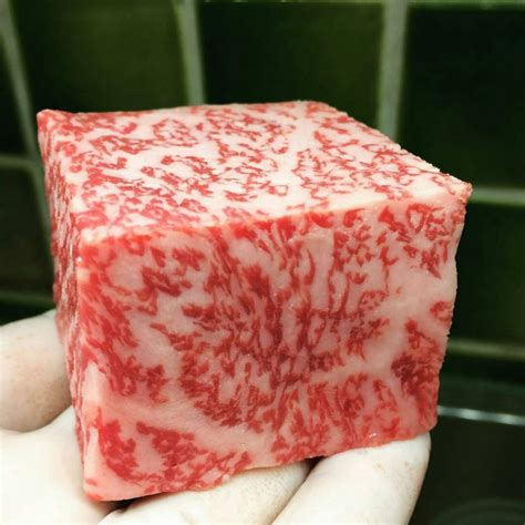 wagyu steak marbling grilled beef ribs grillinfools