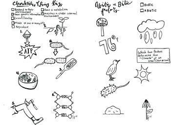 characteristics  life coloring sheet abiotic biotic