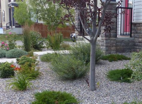 low maintenance landscaping ideas rock and plants home diy low maintenance landscape burnco landscape supplies