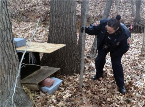 Fairfax County Background Check Keeping Animals Warm Safe In Fairfax County Wtop