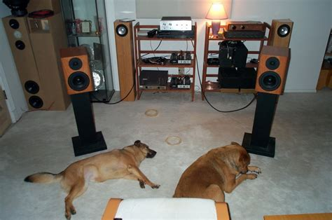 bookshelf speakers placement