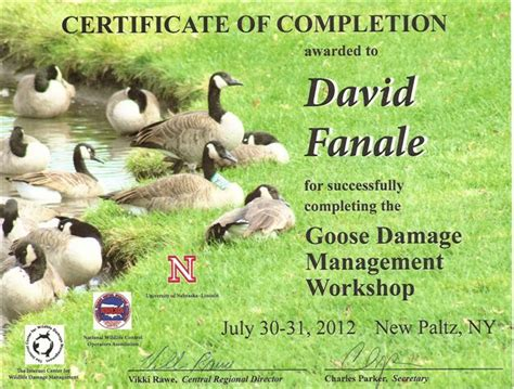 Garden State Wildlife Canada Geese Removal In New Jersey
