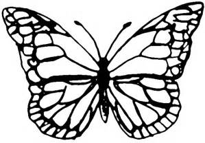 Buterfly Template by Best Photos Of Butterfly Templates Lots Of Sizes