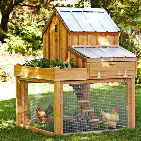 Chicken Coop With Planter by Cedar Chicken Coop And Run With Garden Planter The Green