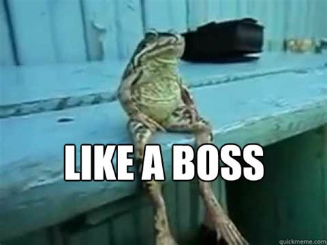 Sitting Meme - like a boss sitting frog quickmeme