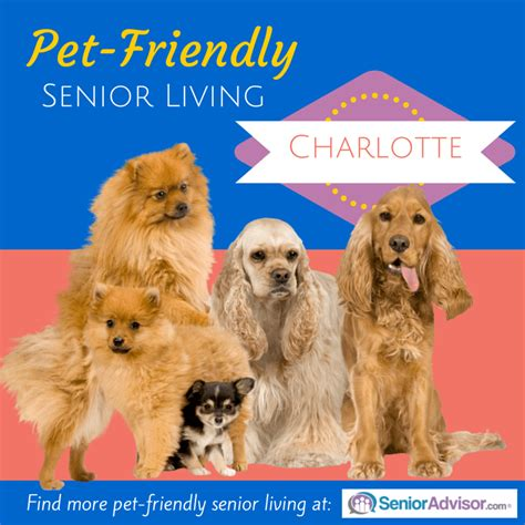 pet friendly archives page 5 of 5 senioradvisor