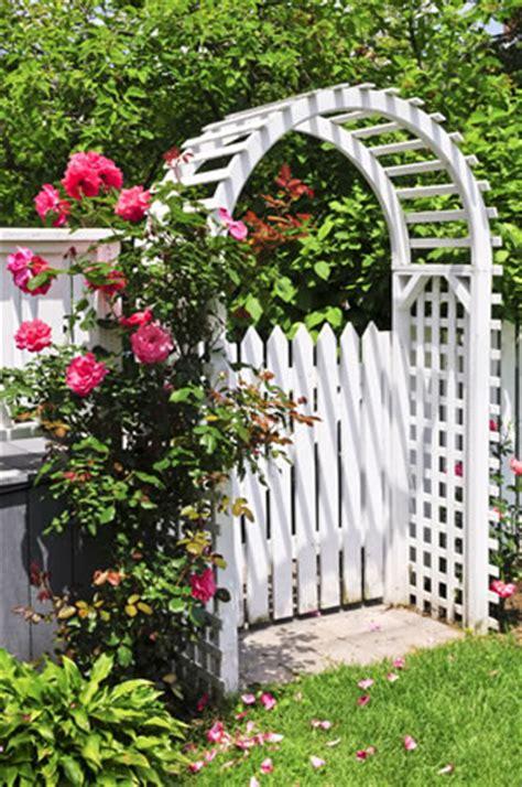 cottage garden design australia rosenbogen aus holz oder metall bauen und bepflanzen