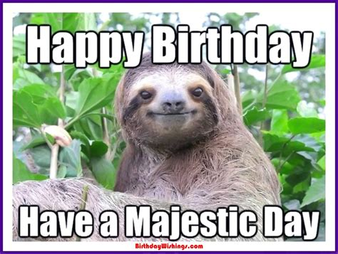 Cute Birthday Meme - funny happy birthday memes with cats dogs funny animals