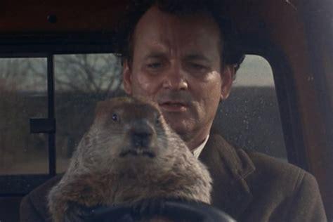 sinopsis groundhog day sinopsis groundhog day 28 images groundhog day 1993