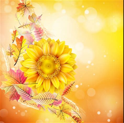 Set Bunga Golden beautiful sunflowers golden background set vector 01 free