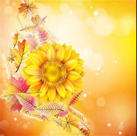 Set Bunga Golden beautiful sunflowers golden background set vector 01 free