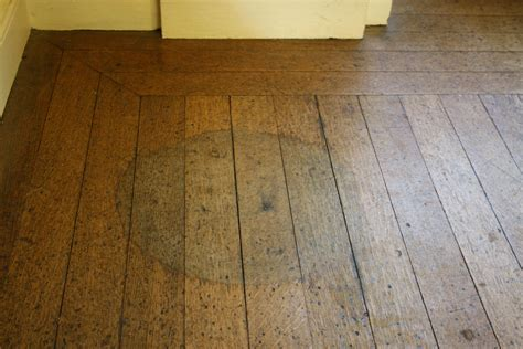 Removing Stains From Hardwood Floors by How To Remove Water Stains From Hardwood Floors