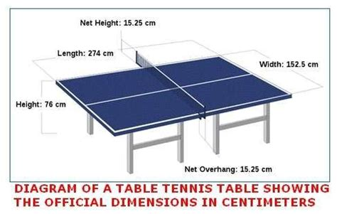 build a ping pong table 1000 images about ping pong on pool