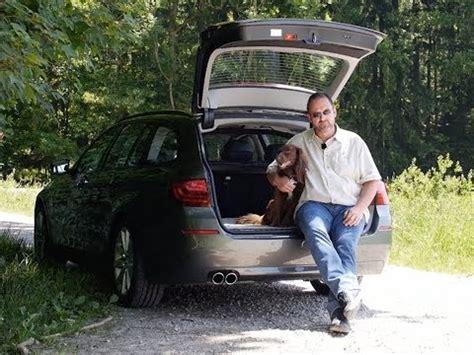Hundetransport Auto by Hundetransport Mit Auto Fahrrad Flugzeug Hund Unterwegs
