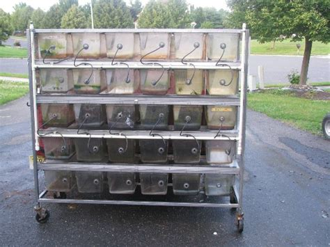 kingsnake classifieds gt breeder rack systems tubs