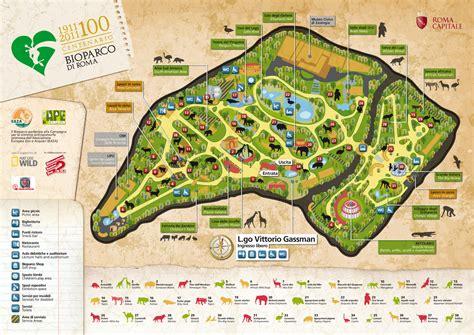 ingresso zoo roma rome travel bioparco di roma zoo a roma roma parchi
