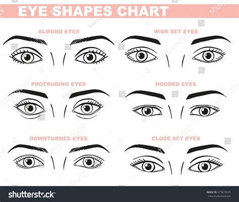 printable eye shapes eyes face chart blank template makeup stock vector