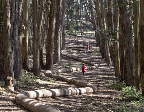 Landscape Inspiration by Wood Line For Site Foundation