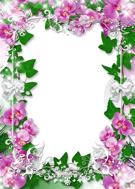 orchideen gestell photo frame with flowers orchid favorite png 914 215 1280