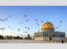 Israel Tours from Indus Travels | Book Holy Land Tour ... 134d