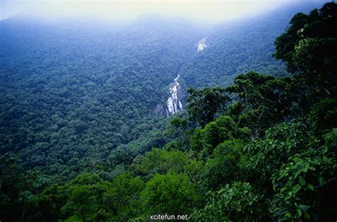 amazon rainforest 5 most beautiful amazing places in world xcitefun net